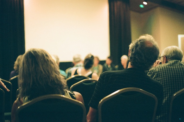 An audience at a presentation.