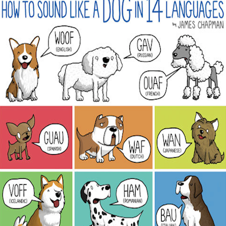 Dog_Sounds.png