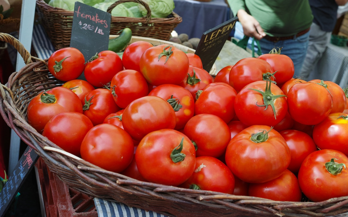 A basket of bright red tomatoes for La Tomatina festival in Spain.