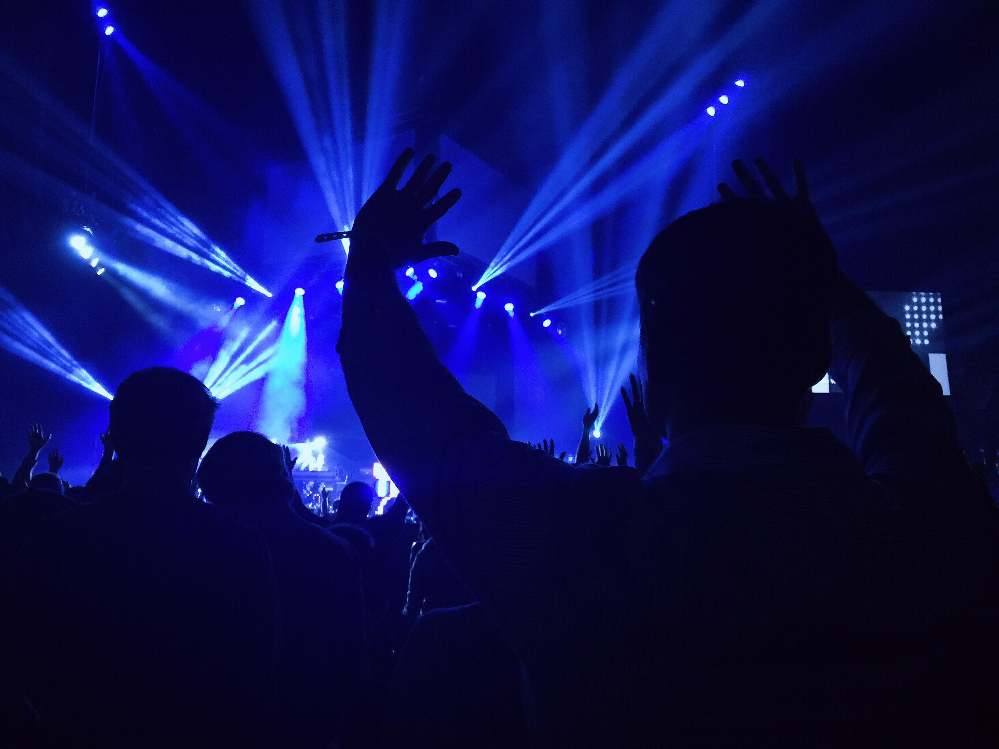 Audience members at a music concert.