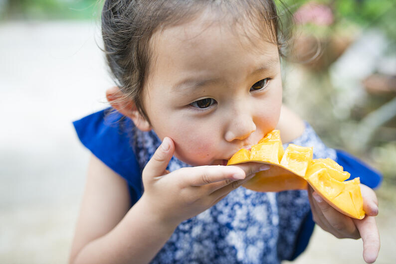 little girl eating mango