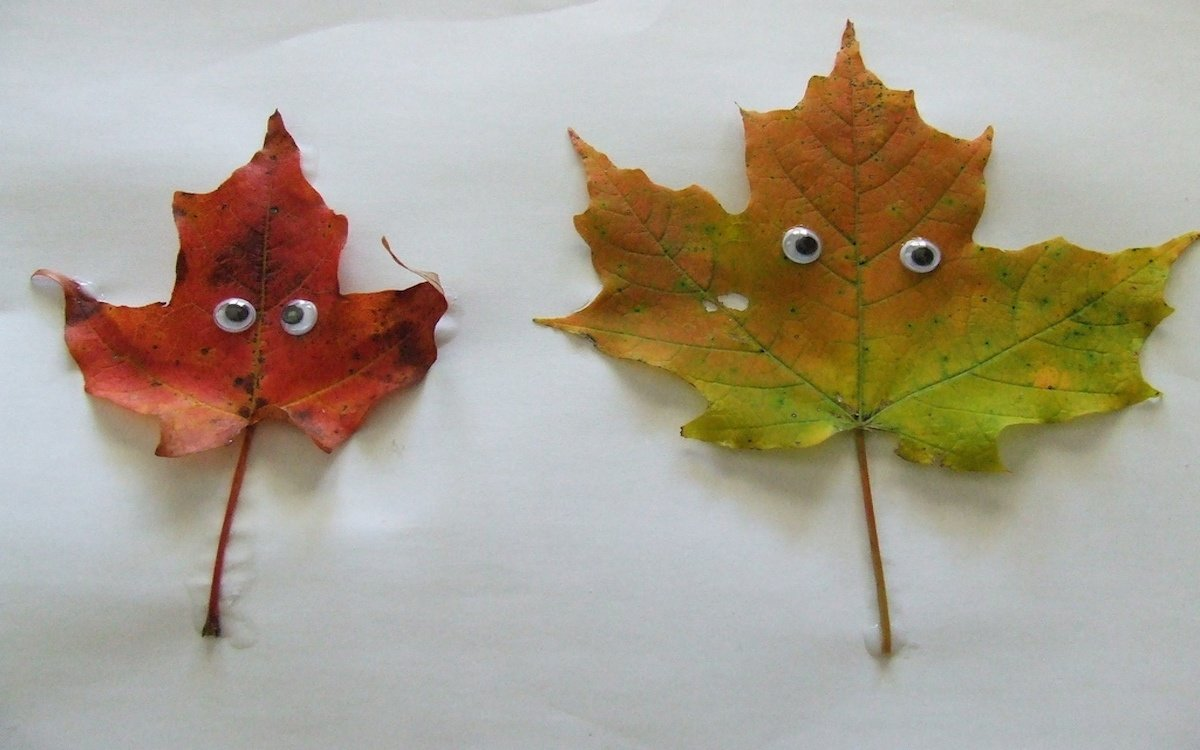 students_alive_leaves